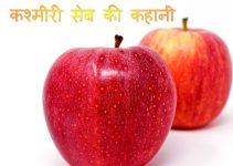 story in hindi.jpg