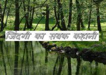 lesson story hindi.jpg