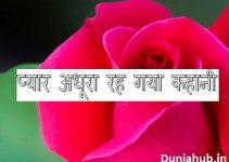 hindi love story.jpg