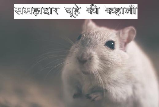 Chuhe ki motivational story in hindi